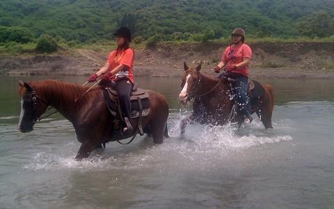 墾丁-悠客馬場《一人騎馬30分鐘優惠價》-預約
