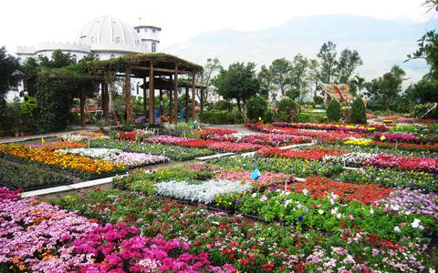 花蓮-鬱金香花園精緻單人美食體驗一日券《優惠票券x1》