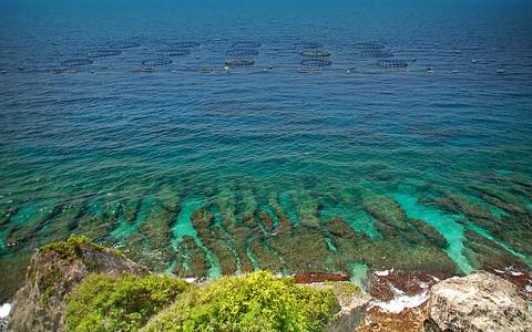 屏東-珊瑚礁島小琉球單人一日遊《天天出發, 4人成行》-預約