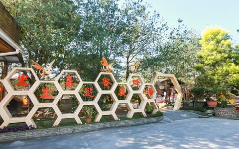 南投-埔里蜜蜂公仔DIY彩繪親子活動《彩繪公仔X1》