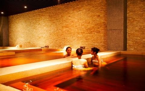 桃園-南方莊園渡假飯店溫泉水療券《優惠票券x2》